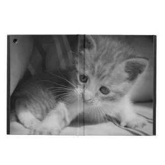 Black and White Kitten Photograph iPad Air Cover