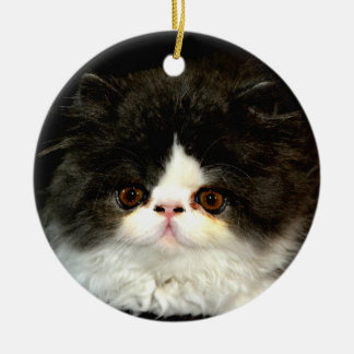 Black and White Kitten Round Ceramic Decoration
