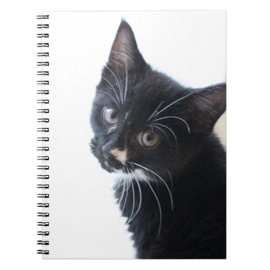 Black and White Kitten Spiral Notebook