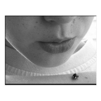Black and White Ladybug Postcard