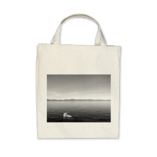 Black And White Landscape 11 Bags