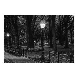 Black and White Landscape Photo of Central Park