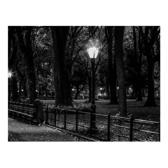 Black and White Landscape Photo of Central Park