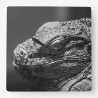 Black and White Lizard Square Wall Clock