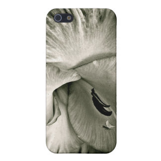 BLACK AND WHITE MACRO WITH AMARYLLIS iPhone 5/5S CASES