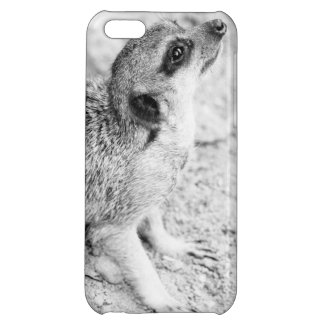 Black and White Meerkat, Animal Photography iPhone 5C Covers