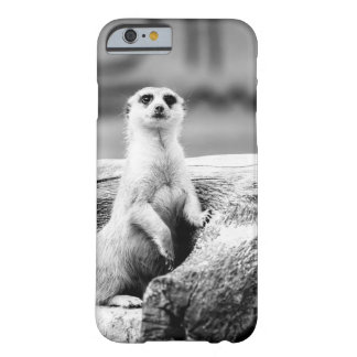 Black and White Meerkat On A Tree Barely There iPhone 6 Case