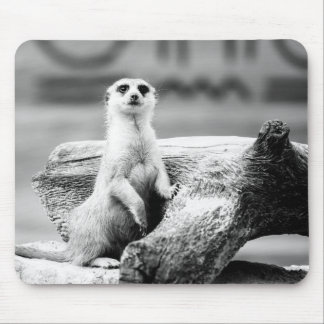 Black and White Meerkat On A Tree Mouse Mat