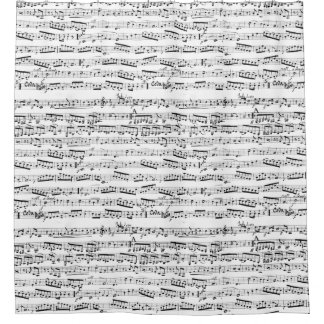 Black and white musical notes shower curtain