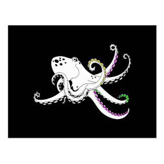 Black and White Octopus Bright Colorful Tentacles Postcard
