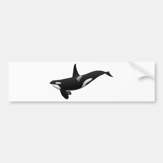 Black and White Orca Killer Whale Bumper Sticker