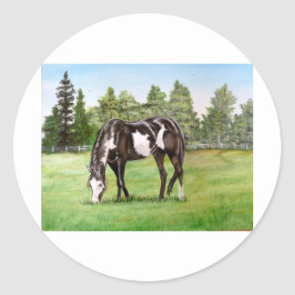 Black and White Paint horse/pony grazing in field Round Stickers