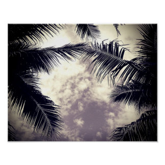 Black and White Palm Tree Beach Decor Photo Poster