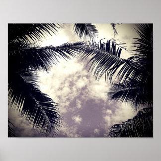 Black and White Palm Tree Beach Decor Photo Poster