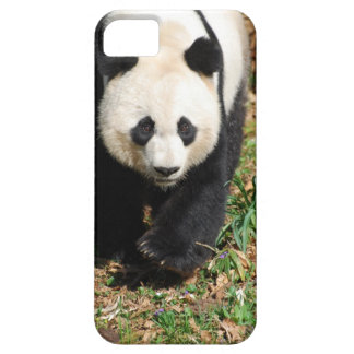 Black and White Panda iPhone 5 Cases
