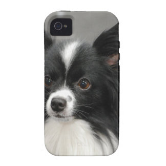 Black and White Papillon iPhone 4 Covers