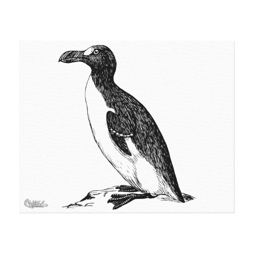 Black and White Penguin Bird Art Stretched Canvas Prints