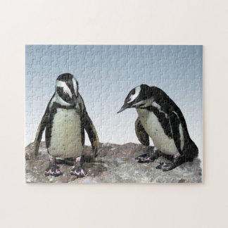 Black and White Penguin Birds Puzzle