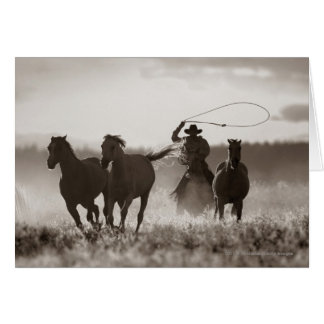 Black and White photo of a Cowboy Lassoing Horses Card