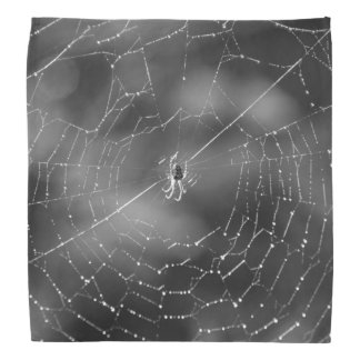 Black and white photograph of a spider and web bandana