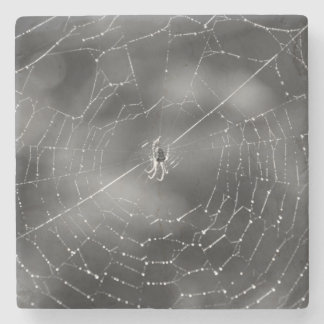 Black and white photograph of a spider and web stone coaster