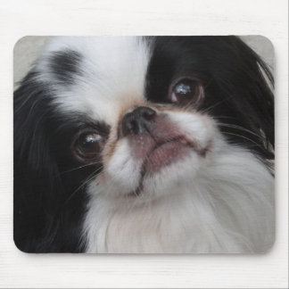 Black and white pooch mouse mat