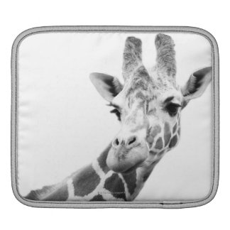 Black and white portrait of a giraffe iPad sleeves