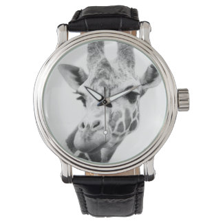 Black and white portrait of a giraffe watch