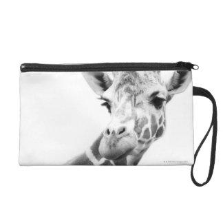 Black and white portrait of a giraffe wristlet