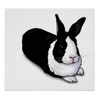 Black and White Rabbit Poster
