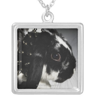 Black and white rabbit with studded collar silver plated necklace