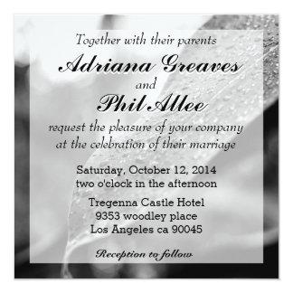 Black and White Raindrops On A Leaf 13 Cm X 13 Cm Square Invitation Card