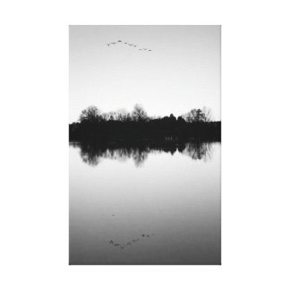 Black and White Reflections Birds Water Canvas