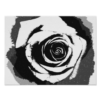 Black and white rose graphic print