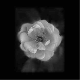 Black and White Rose. Photo Sculpture Key Ring