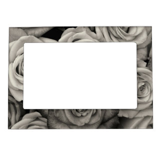 Black and White Roses Magnetic Picture Frame