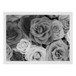 Black And White Roses Pattern Large Poster