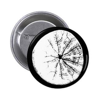 Black and white sand dollar 6 cm round badge