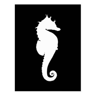 Black and White Seahorse Post Card