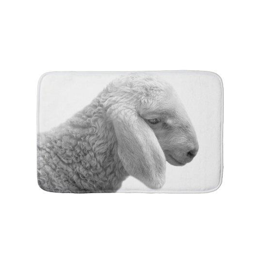 Black and white sheep farm animal photo bath