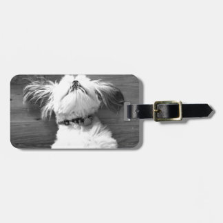 Black and White Shih-Tzu Puppy Luggage Tag