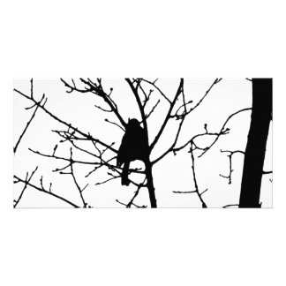 Black and White Silhouette of chickadee in a tree Photo Card
