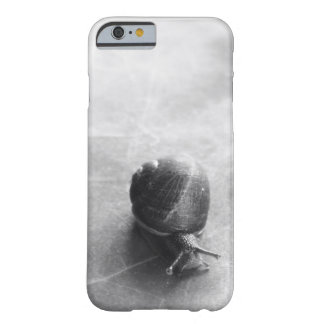 Black and White Snail Barely There iPhone 6 Case