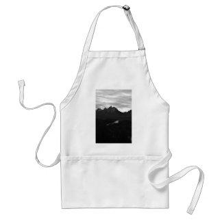 Black and White Snake River Teton Landscape Standard Apron