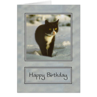 black and white snow kitten happy birthday card
