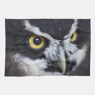Black and White Specacled Owl Tea Towel