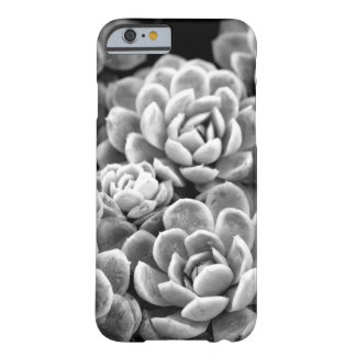 Black and White Star Succulent iPhone 6 Case Barely There iPhone 6 Case