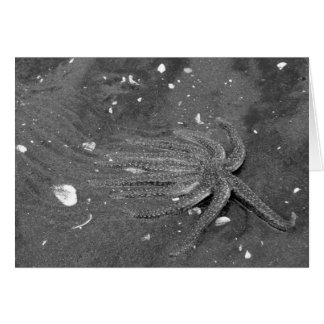 Black and White Starfish Escape Greeting Card