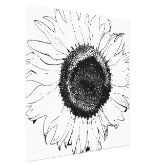 Black and White Sunflower Gallery Wrapped Canvas