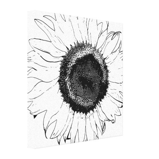 Black and White Sunflower Wrapped Canvas Print